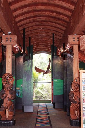 Waitakere Ranges: Example of the beautiful interior of the Arataki Visitor Centre