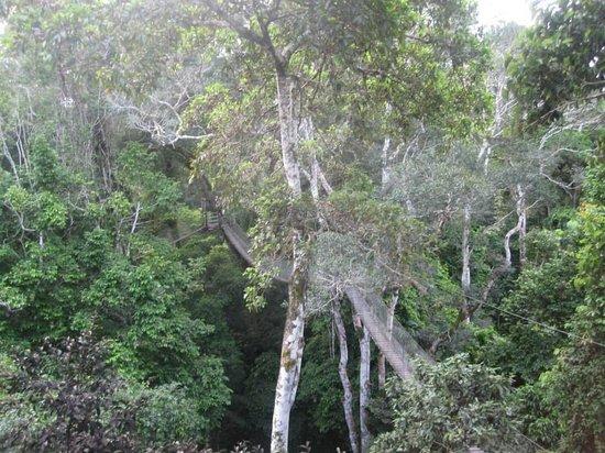 Inkaterra Hacienda Concepción: Canopy walks
