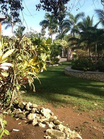 Westender Inn: beautiful garden