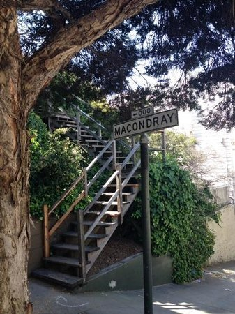 Macondray Lane: Barbary Lane!!!!