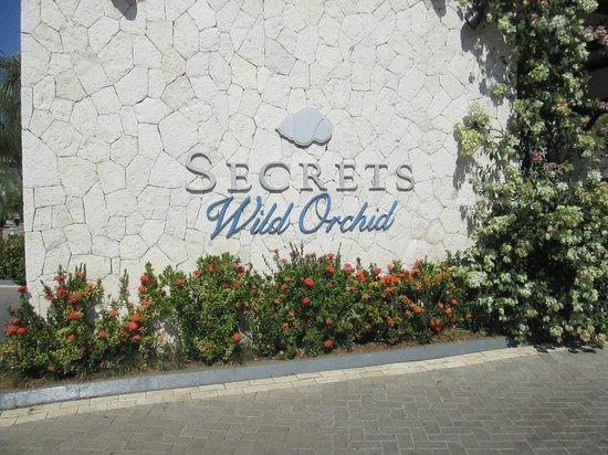 Secrets St. James Montego Bay: Secrets Wild Orchid was just across the way from St. James