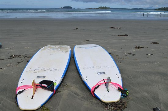 Surf Sister Surf School: Surf Sister Boards