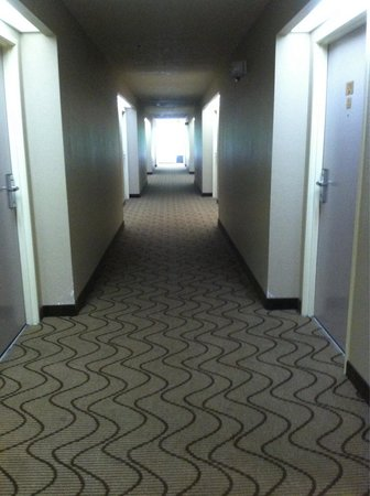 Comfort Inn & Suites at Dollywood Lane: New carpet in hallway & fresh painted room doors!