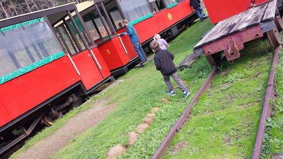 Pemberton Tramway: tram