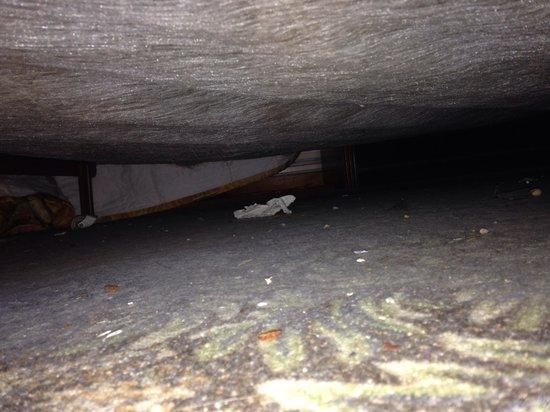 Orangeville Motel: Under the bed continued