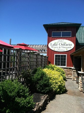Lake Ontario Winery