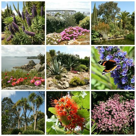 Ile de batz roscoff all you need to know before you go for Jardin exotique