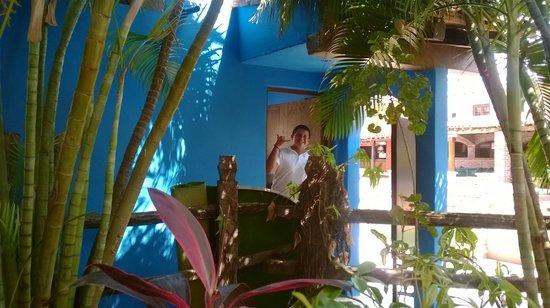 Hotel Playa Mazatlan: mi amigo el canelo