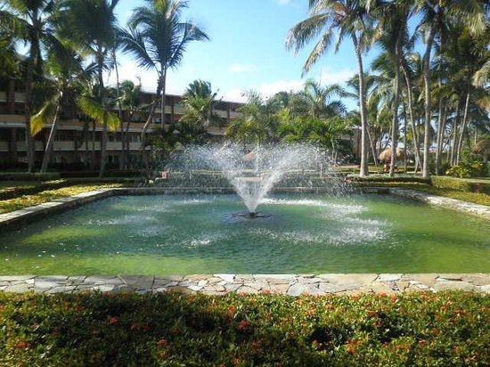 Iberostar Punta Cana: la fuente