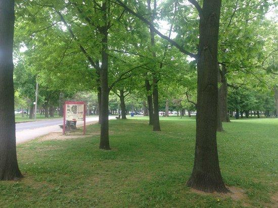 High Park: Green Space