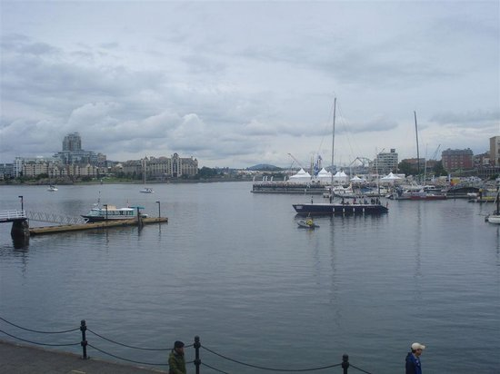 Best Western Plus Inner Harbour : The bay