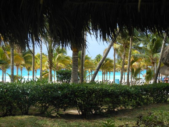 Hotel Riu Playacar: view of beach