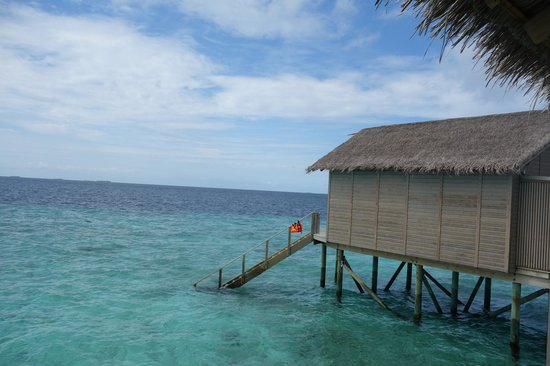 Centara Ras Fushi Resort & Spa Maldives : 窗外景觀
