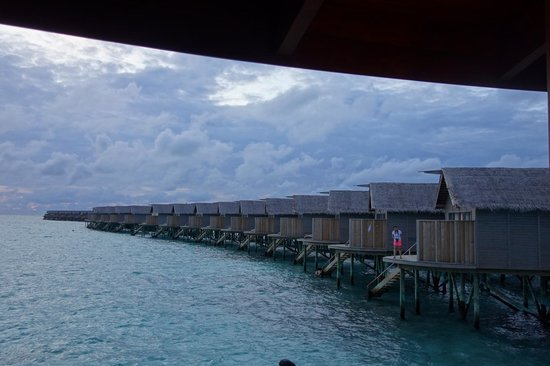 Centara Ras Fushi Resort & Spa Maldives : 酒吧外景觀
