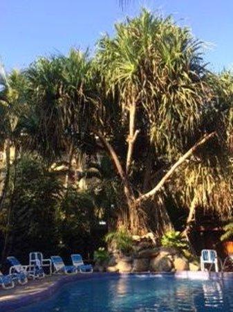 Hotel Los Ranchos: Green areas and pool
