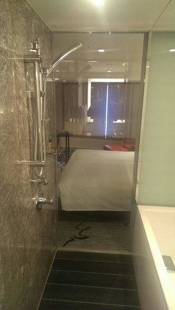 Hilton Tokyo: Bath