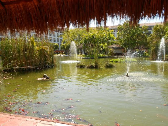 Meliá Puerto Vallarta All Inclusive: Lago dentro del hotel
