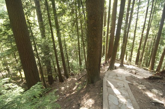 The Grouse Grind: grind