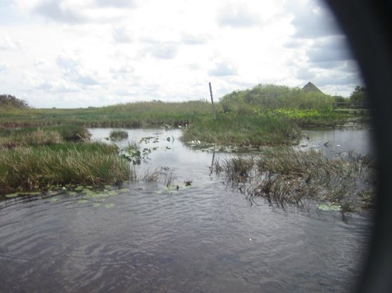 Miccosukee Indian Village : Everglade airboat ride