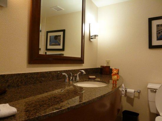 Los Angeles Marriott Burbank Airport : Bathroom