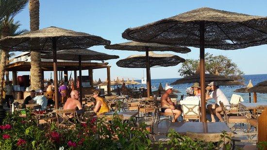 Royal Grand Sharm Hotel: Beach bar