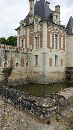 Chateau de Selles sur Cher: Vue des douves