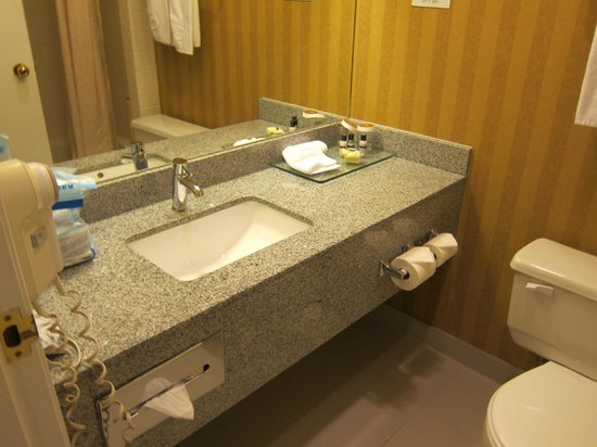 Executive Airport Plaza Hotel & Conference Centre Richmond : Nice bathroom