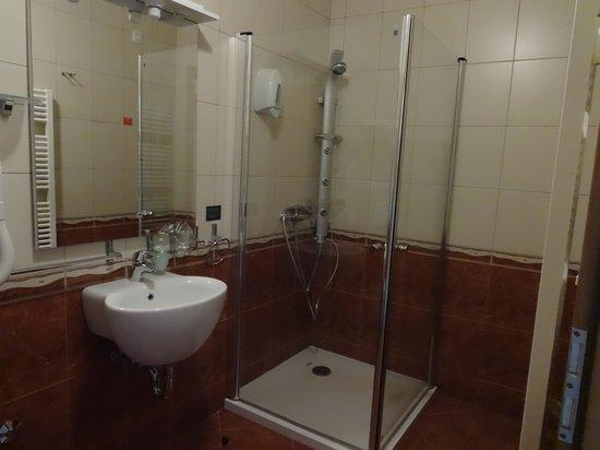 Hotel Central: bathroom