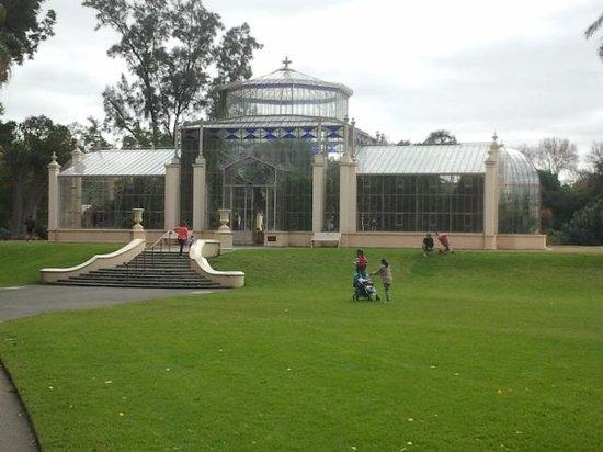 Adelaide Botanic Garden: Historic Palm House (Madagascan collection)