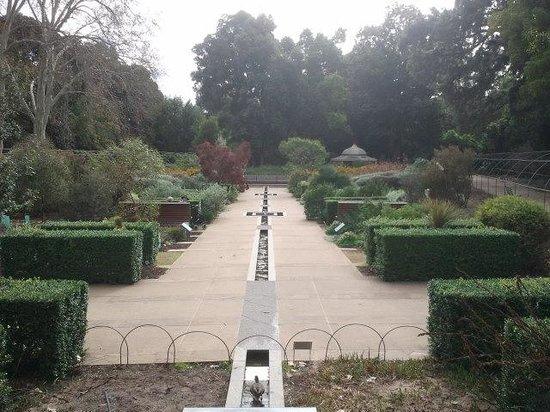 Adelaide Botanic Garden: Mediterranean Garden