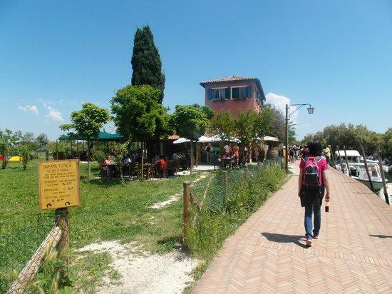 Isla de Torcello: Verso il borgo