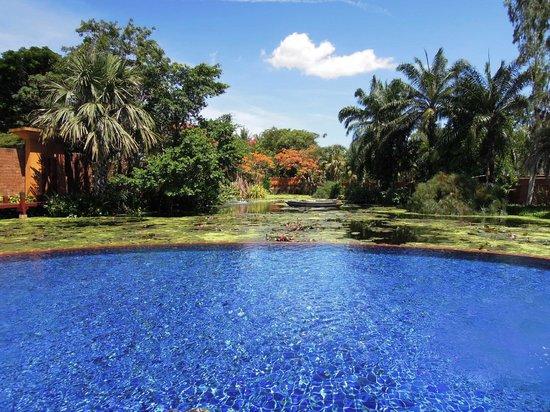 Anantara Hua Hin Resort : Lagoon area infinity pool