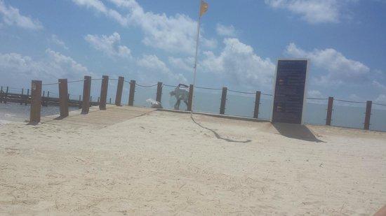 Ocean Maya Royale: Everywhere was kept immaculate