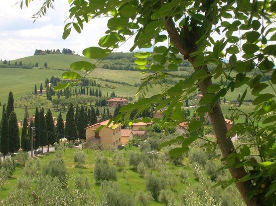 Osteria La Porta : vista da Monticchiello