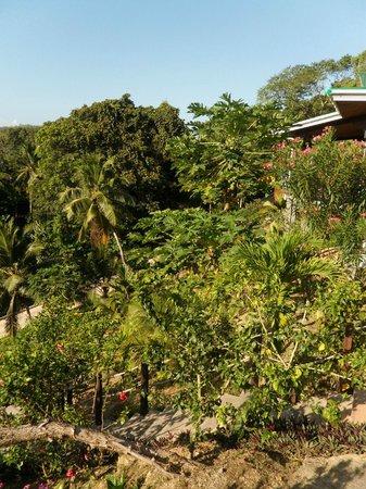 Villas de Jardin: vom Balkon