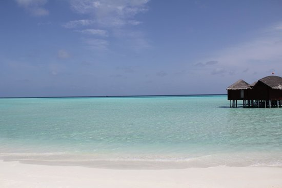 Anantara Dhigu Maldives Resort: The Beach