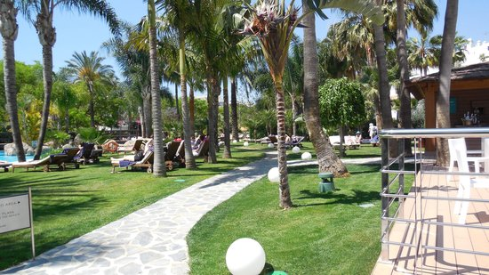 Meliá Marbella Banus: Gardens surrounding family pool