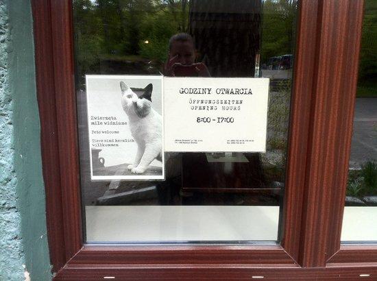 Wolf's lair - Wolfsschanze : Polnischer Sinn für Humor: Schild mit hitler-Katze am Restaurant-Eingang