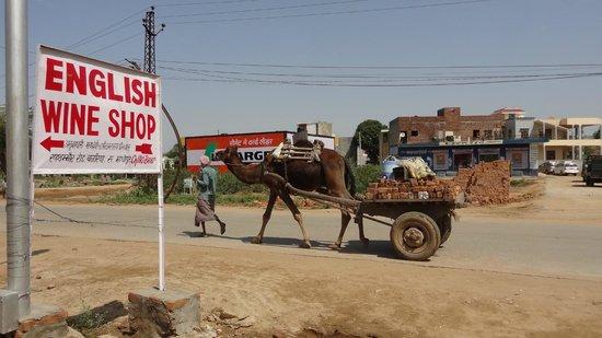 Vivanta by Taj - Sawai Madhopur Lodge: Local shop sign