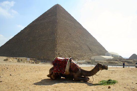 Pyramide de Khéops : pirámide de Kefrén