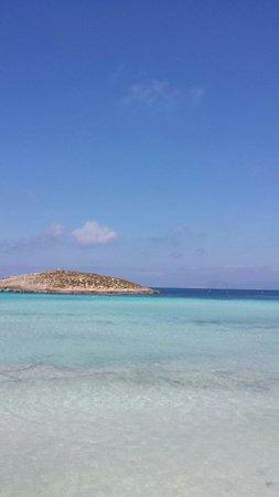 Playa de Ses Illetes: Stupendo
