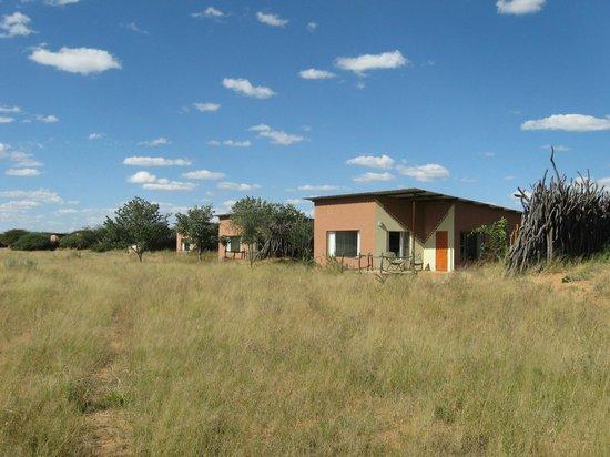 Okonjima Bush Camp: View room