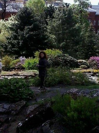 Botanical Gardens (Botanisk Hage og Museum) : Sentieri, Botanisk Hage