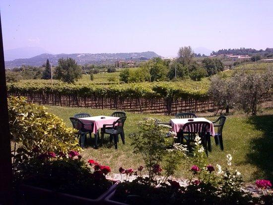 Bar Trattoria alla Prada: giardino