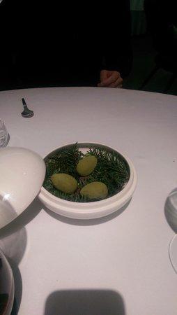 Geranium: Green eggs - chocolate