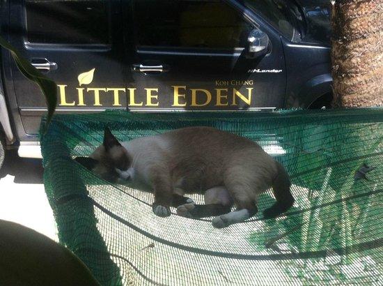 Little Eden Bungalows & Restaurant: Entspannung :)