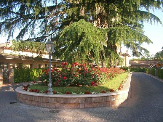 Piccolo Borgo : フロントの前 花が豊富です。