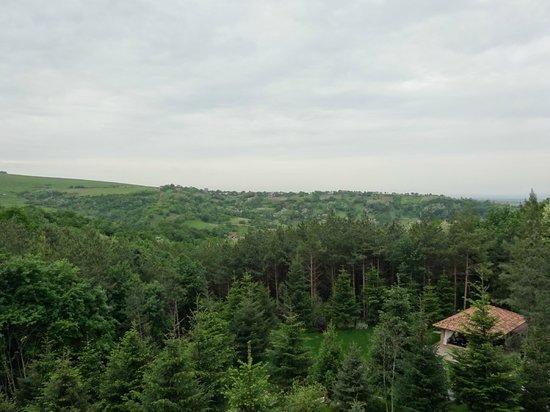 Helen Hotel Bacau: Blick vom Balkon