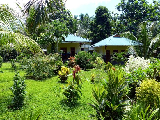 Bunaken Beach Resort : Gardenbungalows