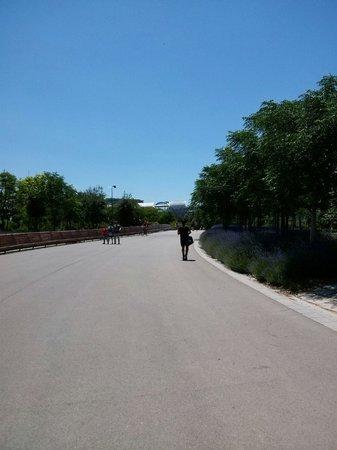 Madrid Rio : Poca sombra